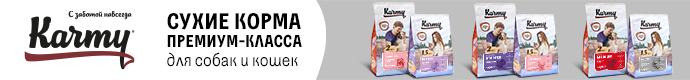 Купить корм для кошек Премиум в интернет магазине Карми Karmy