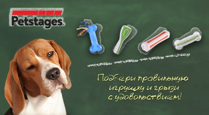 Petstages_image